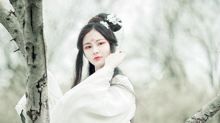 搜神记之斑狐_【搜神记】卷十八·斑狐