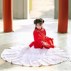 汉尚华莲传统汉服女日常秋冬明制双层毛呢重工绣花立领袄裙马面裙