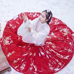汉尚华莲传统汉服女装日常百搭秋冬款团花刺绣马面裙大摆大红色