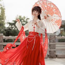 她说原创【云绯】传统汉服齐胸齐腰襦裙大袖衫