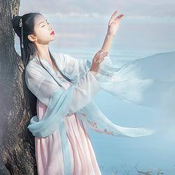 汉尚华莲传统汉服女装月痕高腰齐胸襦裙花朵刺绣春夏装日常性价比