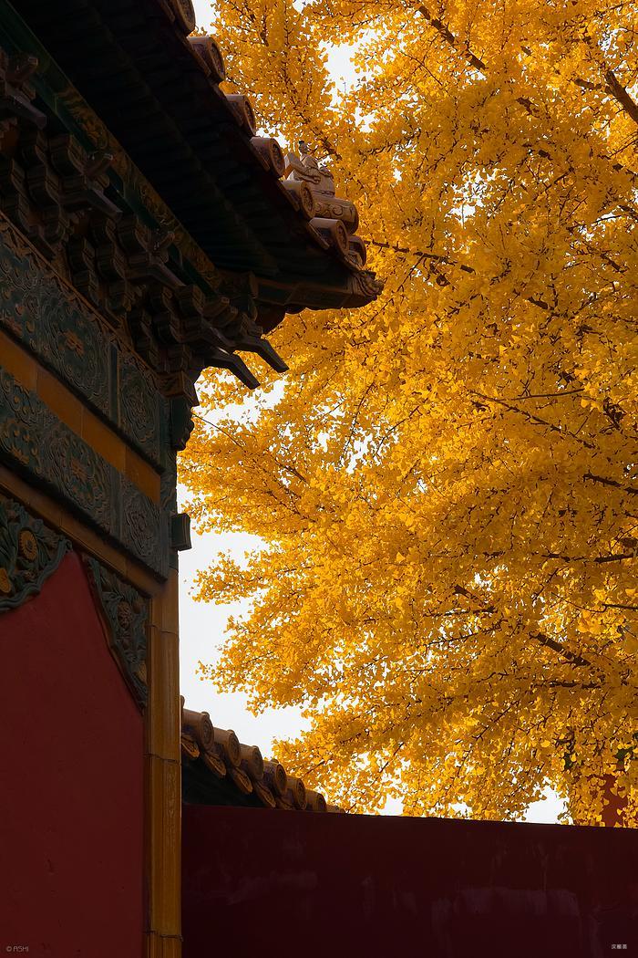 秋天和故宫