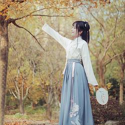 香菱 花朝记汉服原创梅花灯笼刺绣设计交领上襦下裙汉元素日常女