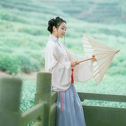 君子意花朝记原创汉服刺绣夹竹桃立领对襟琵琶袖袄裙日常秋冬女装