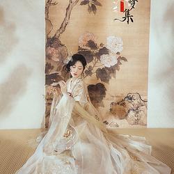 已成团欣赏采梦集原创传统日常汉服女唐6米摆绣花齐胸襦裙大袖衫