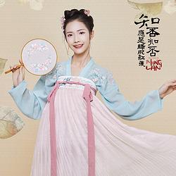 汉尚华莲x知否合作款【盛如兰】同款绣花齐胸襦裙传统汉服日常女