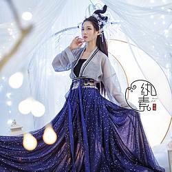 【星如月】纨素 绣花钉珠亮片星空主题一片式齐腰套 汉服