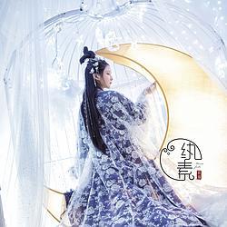 【小月季】纨素  白色月季绣花网纱唐制大袖衫 汉服